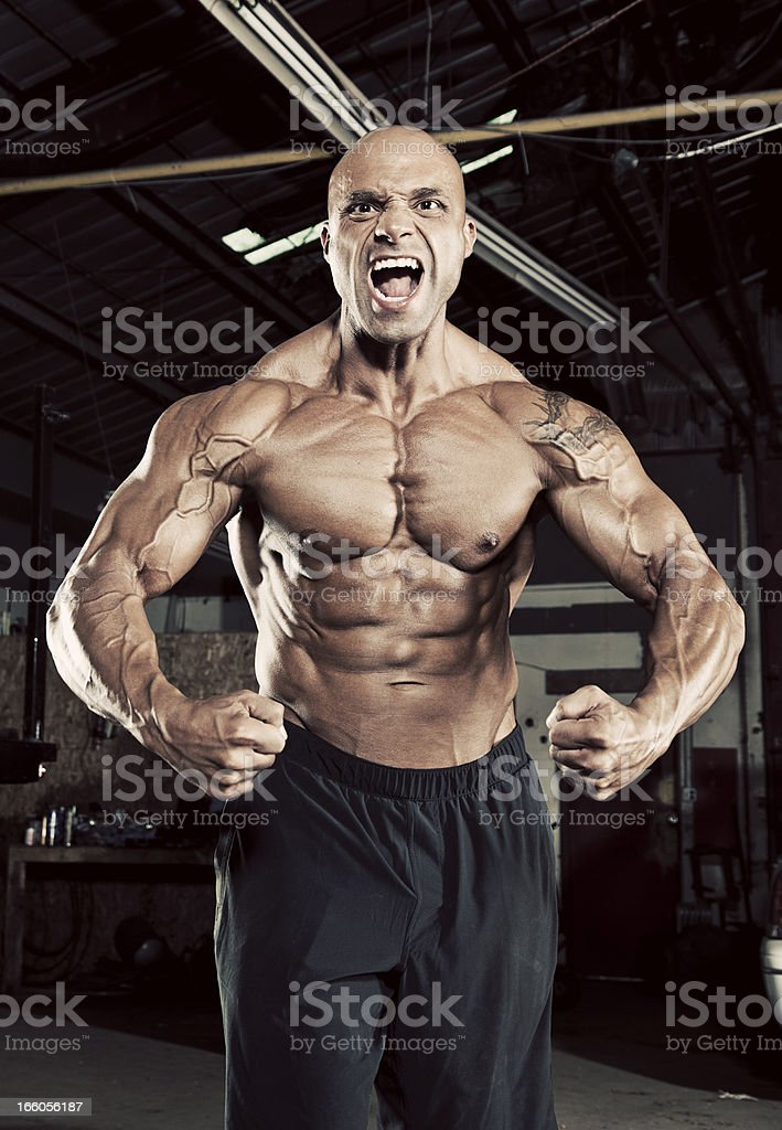 Muscularity royalty-free stock photo