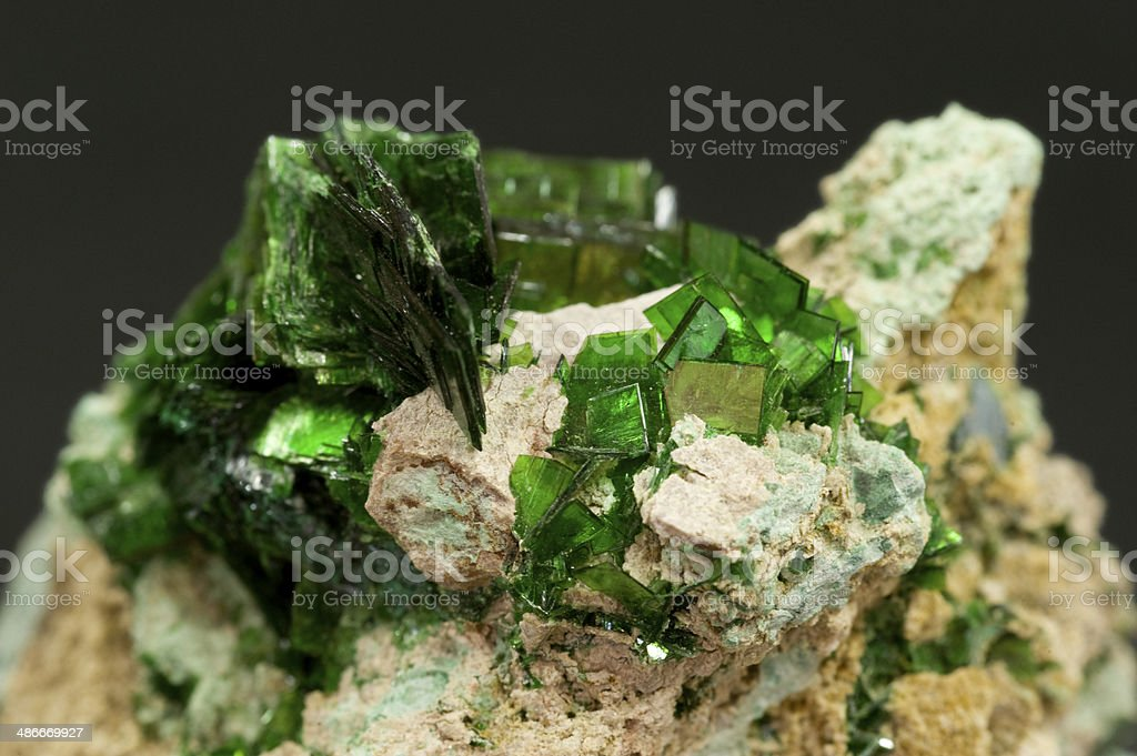 Museum mineral series: Radioactive Metatorbernite (copper uranyl phosphate) from Zaire. stock photo