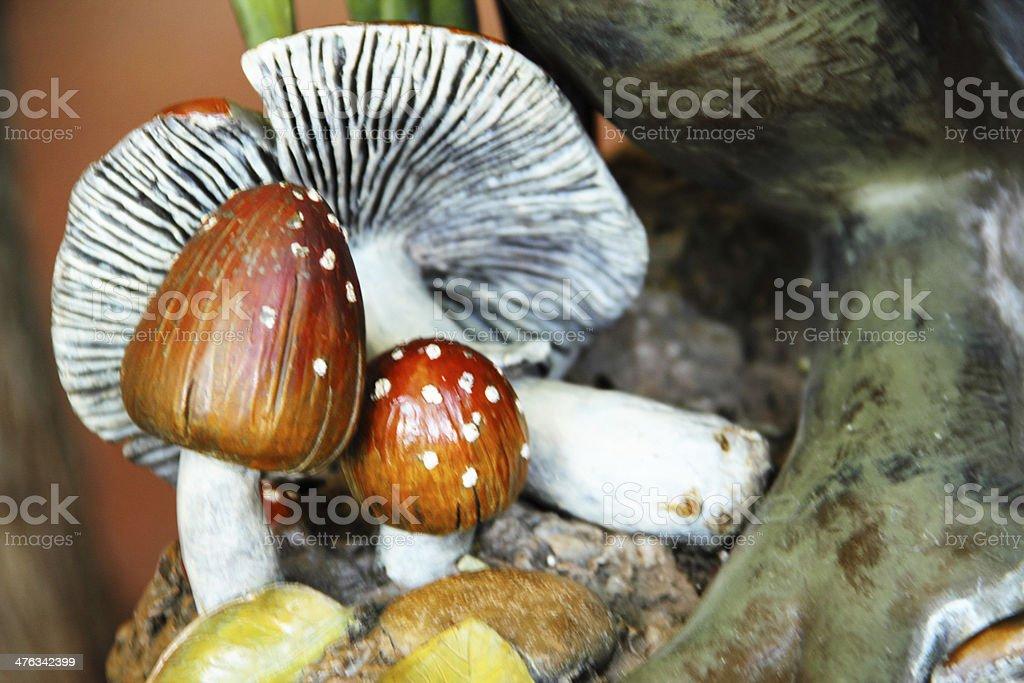 Mushroom Amanita Muscaria Fly Agaric Toxic royalty-free stock photo