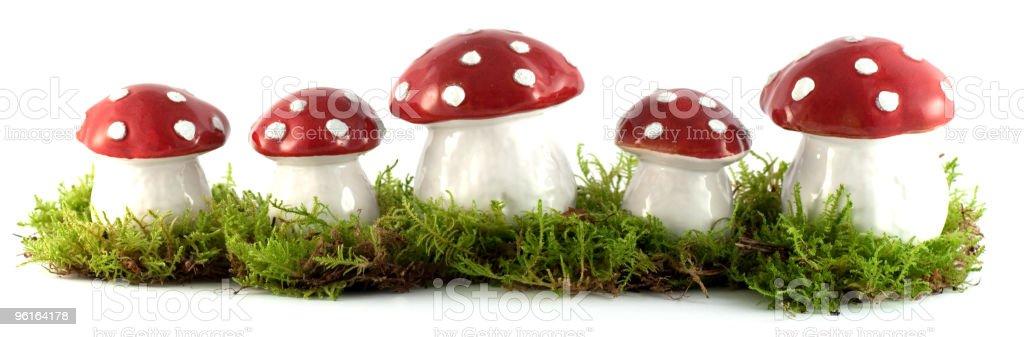Mushroom border royalty-free stock photo