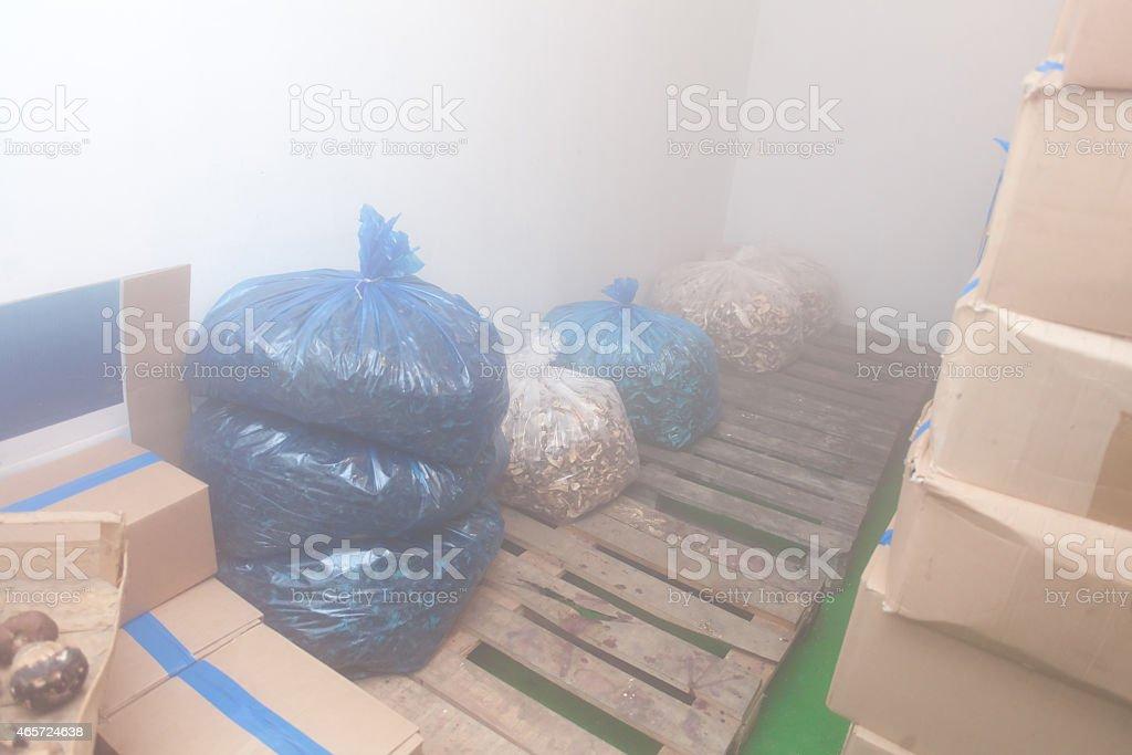mushroom cold storage stock photo