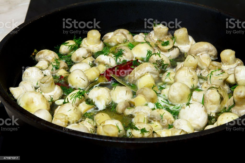 Mushroom frying pan. stock photo