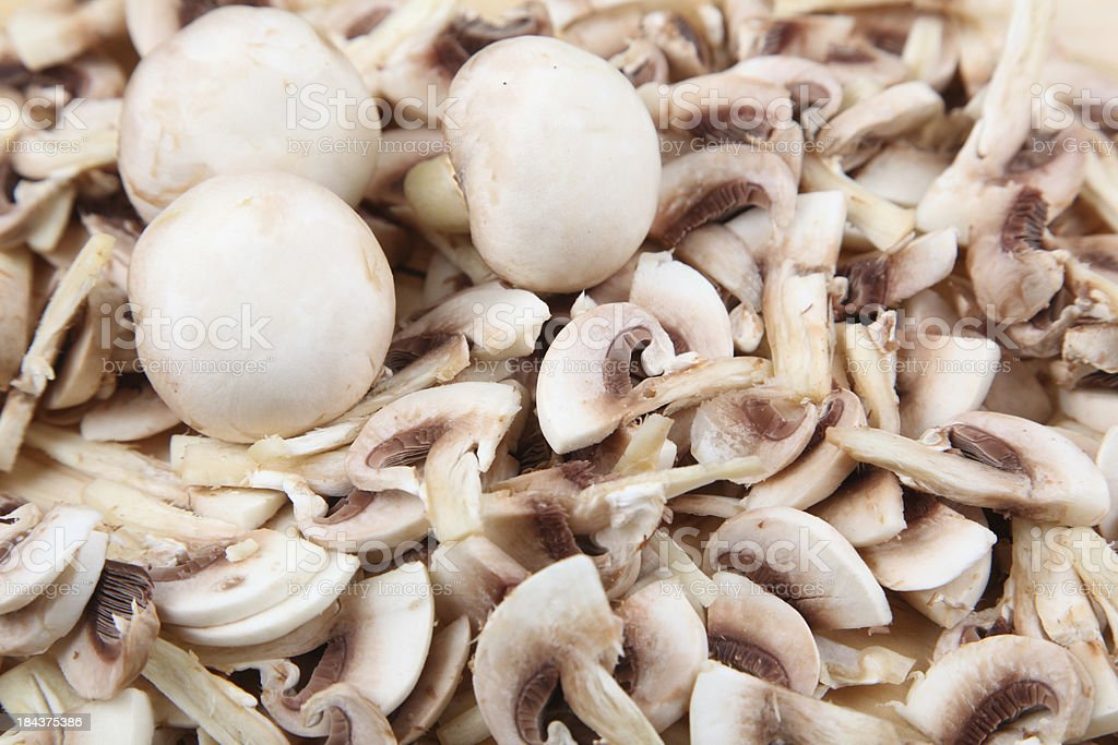Mushroom royalty-free stock photo