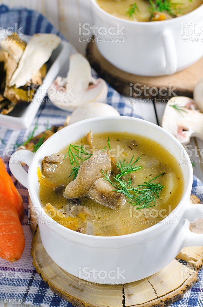 Mushroom soup with dill in white plate stock photo