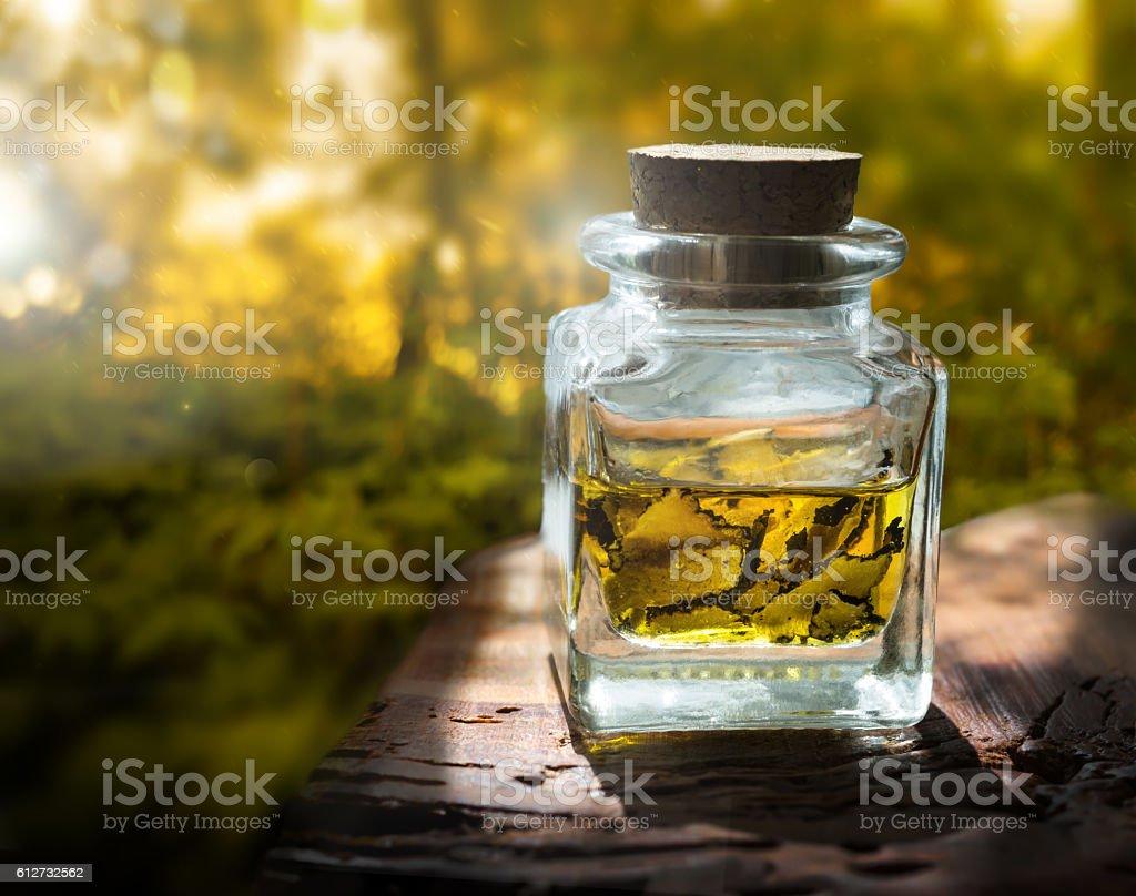 mushroom  truffle in jar of glass stock photo