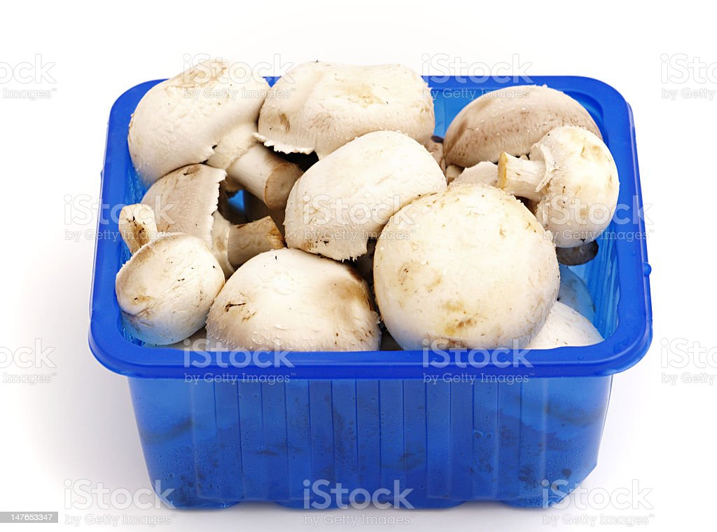 mushrooms in a plastic basket royalty-free stock photo