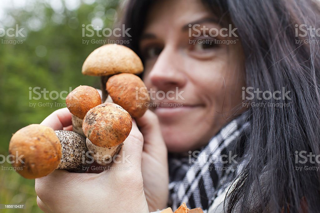 Mushrooms in hands royalty-free stock photo