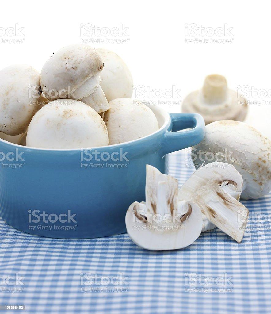Mushrooms in the blue pot stock photo