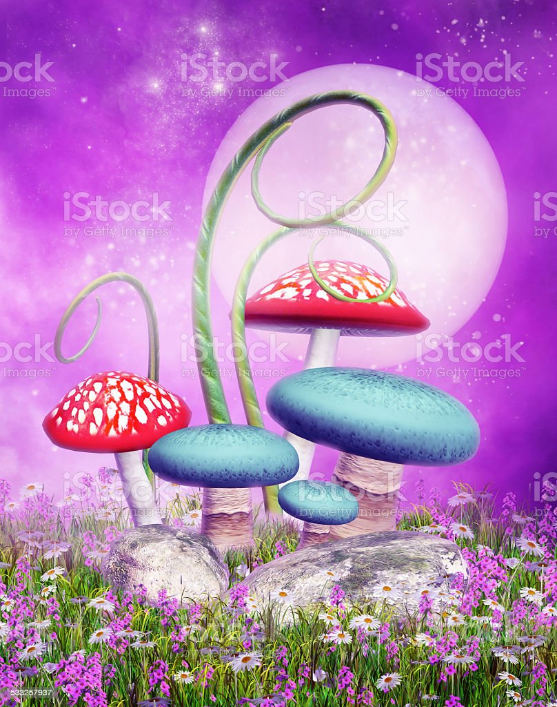 Mushrooms on a colorful meadow stock photo