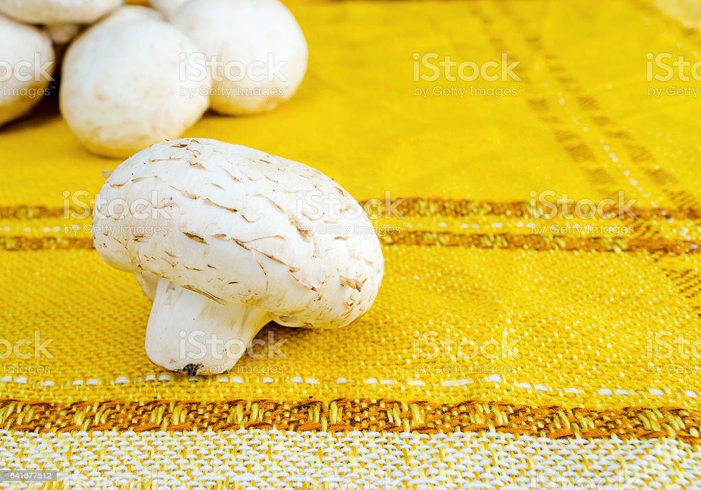 Mushrooms on a yellow cloth stock photo