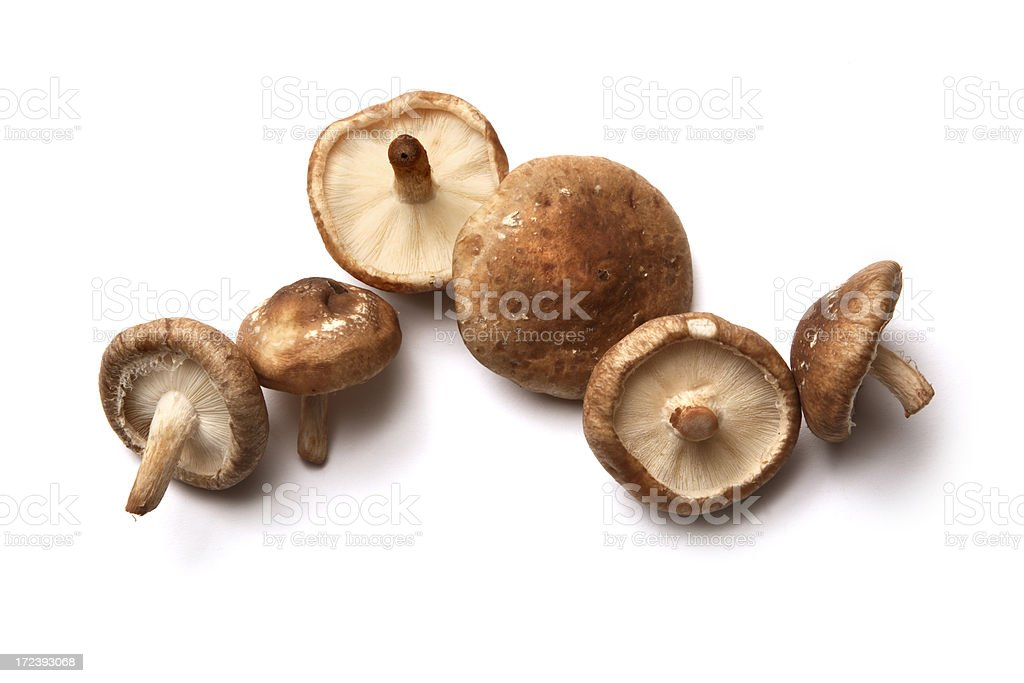 Mushrooms: Shiitake Mushrooms Isolated on White Background stock photo