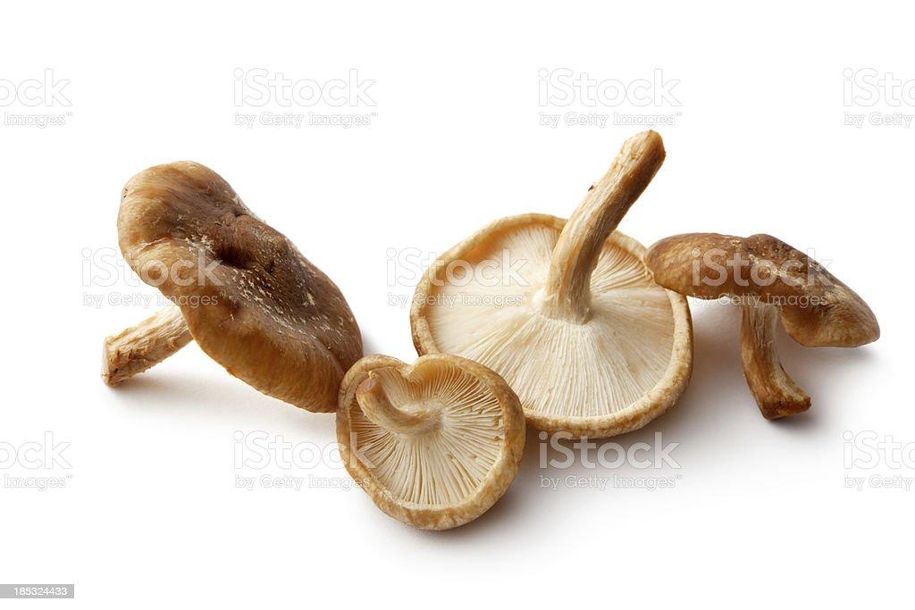 Mushrooms: Shiitake stock photo