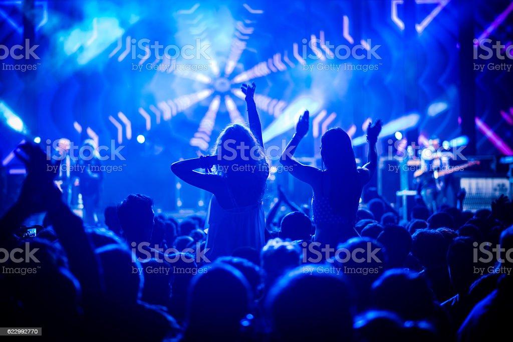 Crowd enjoying at music concert.