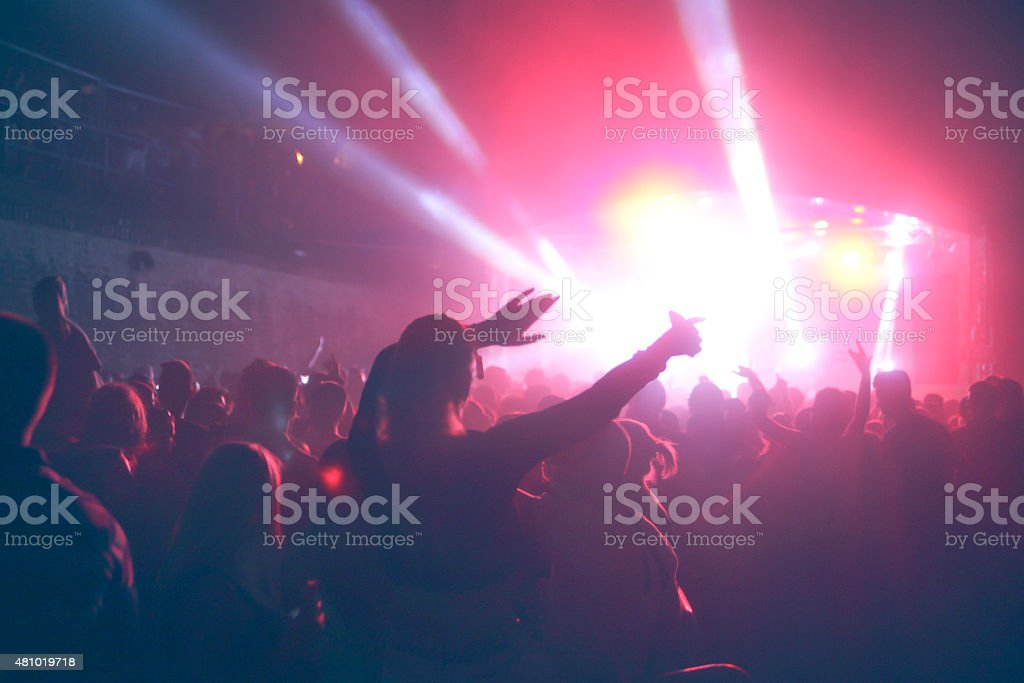 Music festival concert crowd stock photo