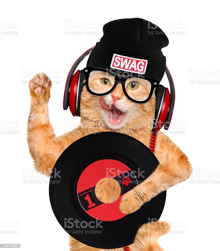Music headphone vinyl record cat . stock photo