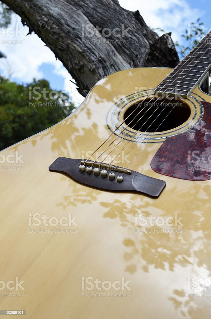music in the park royalty-free stock photo