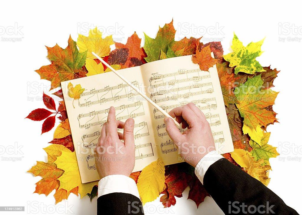 Music of Autumn royalty-free stock photo