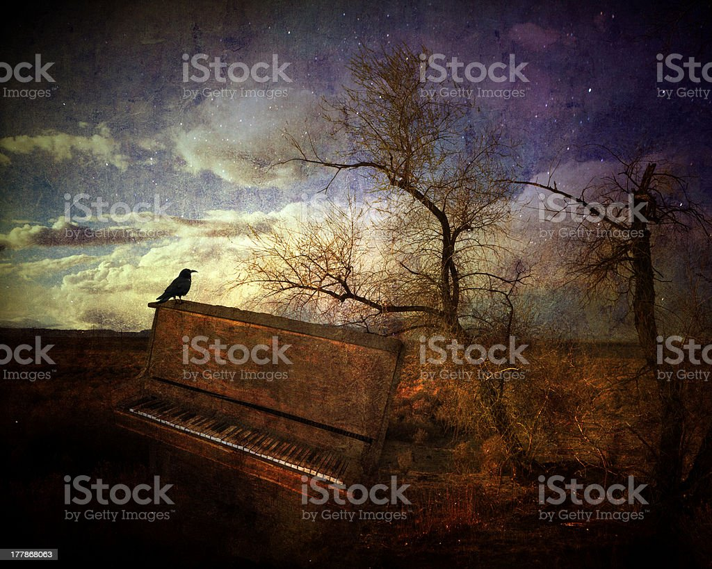 Music of the wind royalty-free stock photo