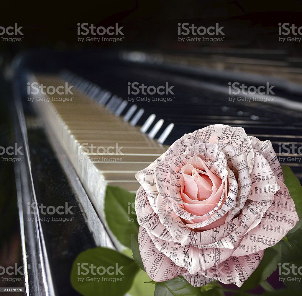 Music symbol. Beautiful pink rose with note on piano keyboard stock photo