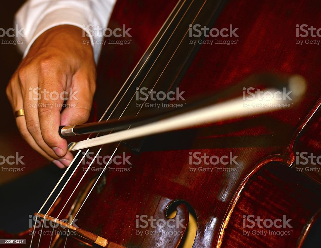 musical instrument stock photo