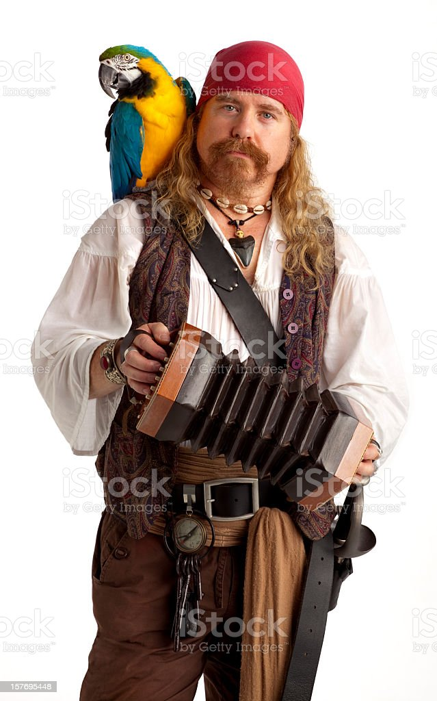 Musical Pirate with a Parrot and Concertina on White. stock photo