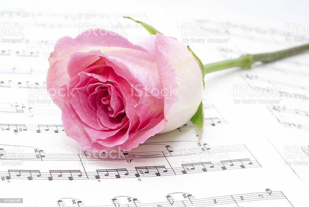 musical sheet. royalty-free stock photo