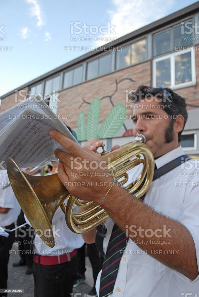 Musician. stock photo