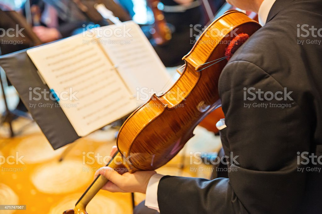 Musician playing his violin royalty-free stock photo