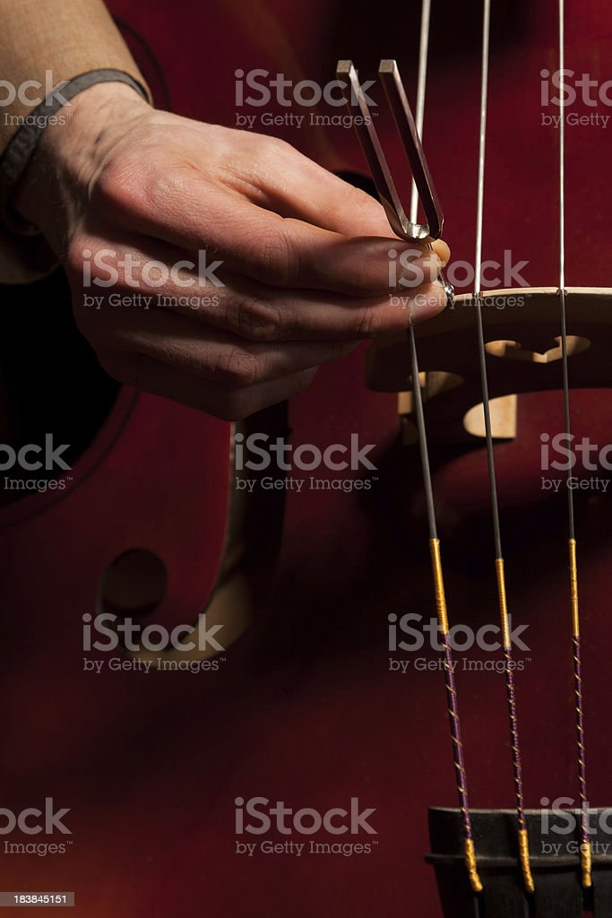 Musician tuning his bass (doublebass) with a tuning-fork stock photo