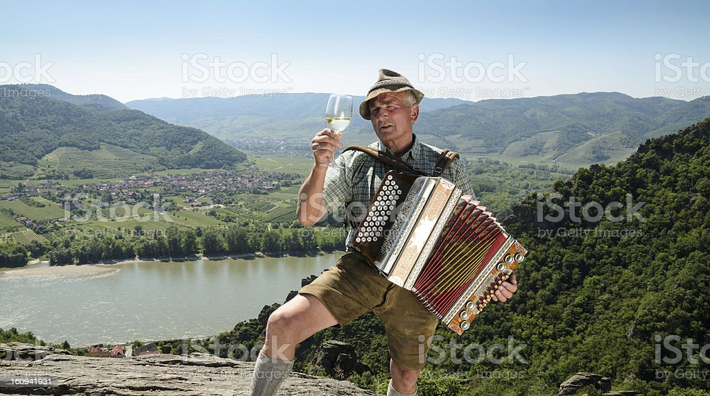 Musician with accordion stock photo