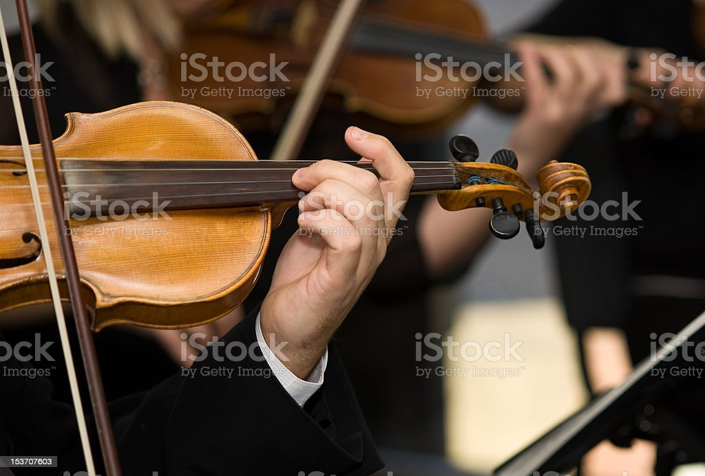 Musicians playing violins in the orchestra stock photo