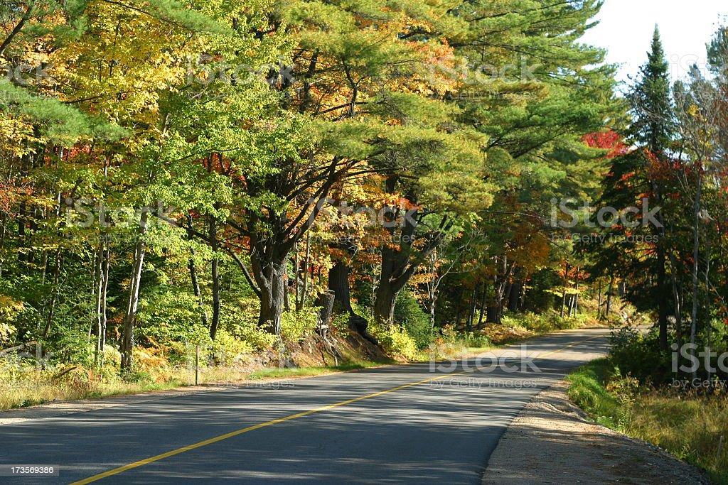 Muskoka Road 3 stock photo