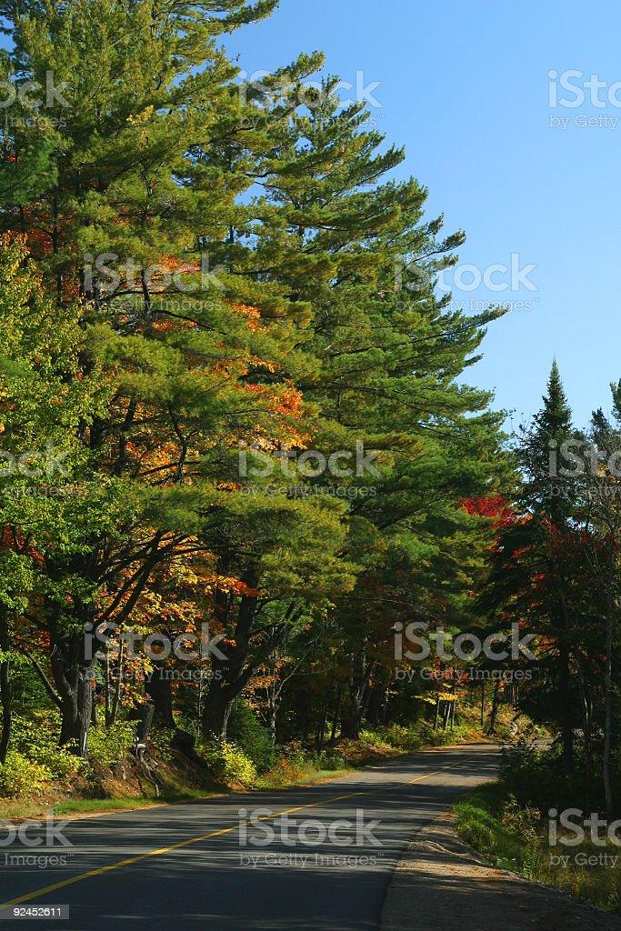 Muskoka Road royalty-free stock photo