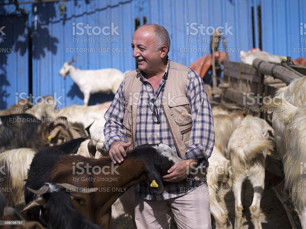 Muslim man  smiles.Goat at animal market in istanbul. royalty-free stock photo