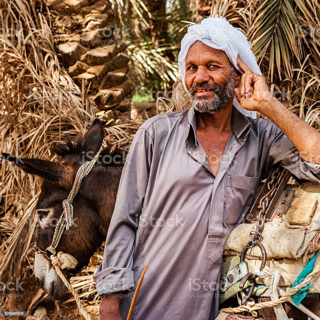 Muslim man with donkey cart, Siwa Oasis, Sahara stock photo