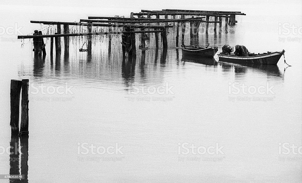 mussel farms stock photo
