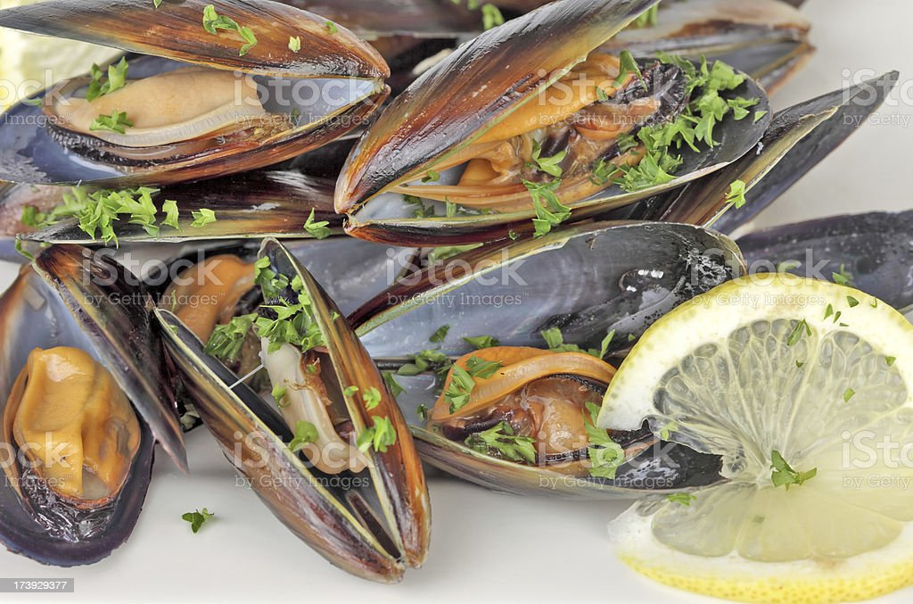 Mussel in white wine stock photo