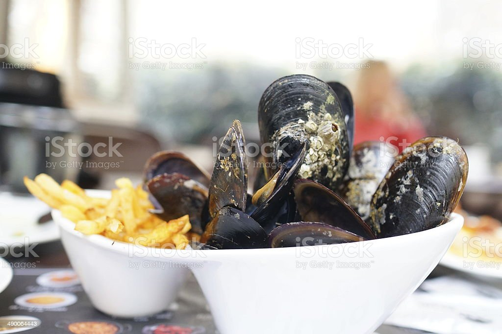 Mussel stock photo