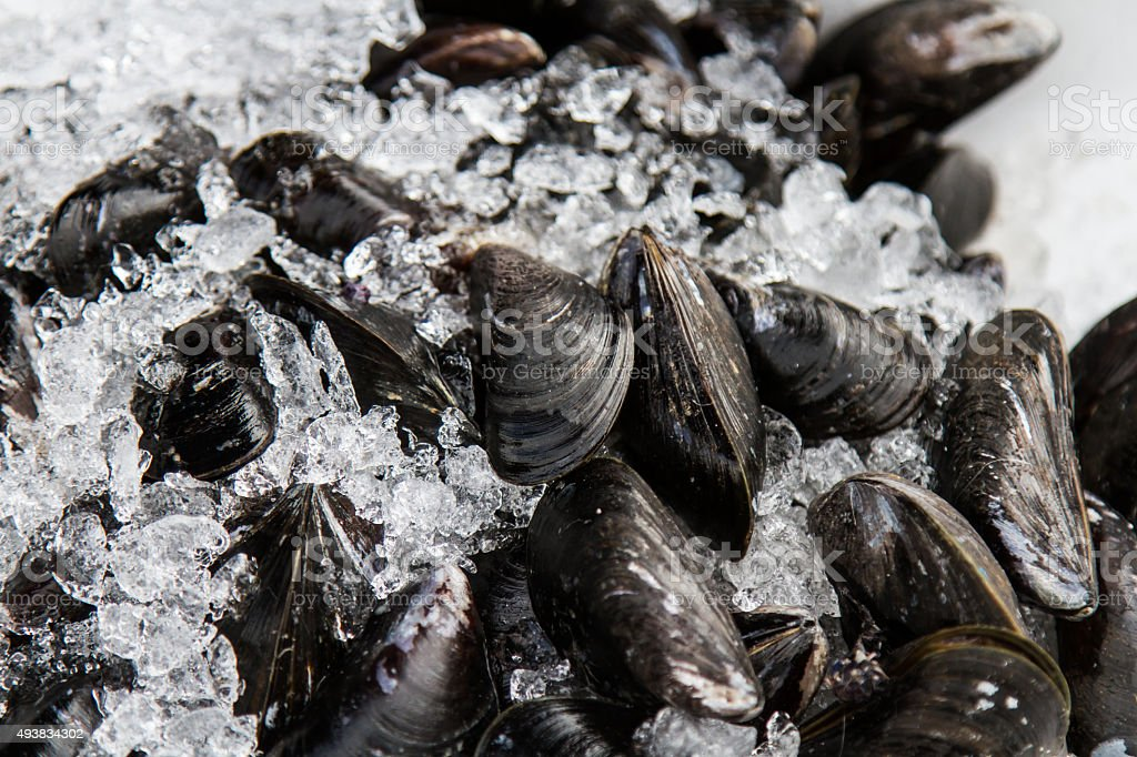 Mussels are black ice on the market in France stock photo