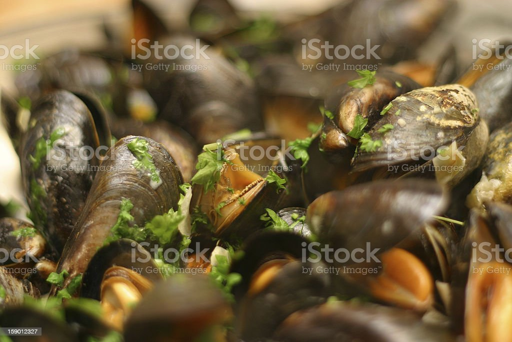 Mussels Cooking in White Wine Sauce stock photo
