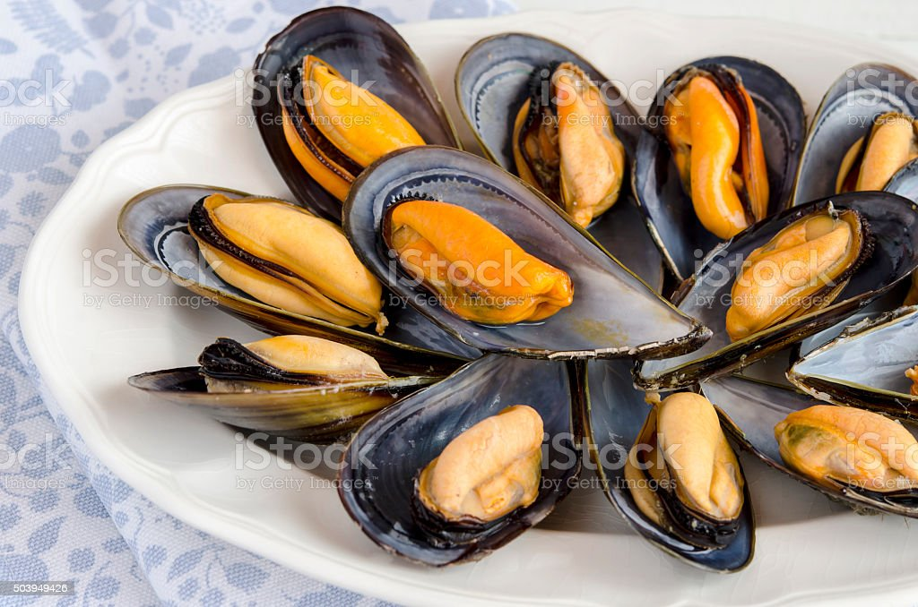 Mussels in the shell stock photo