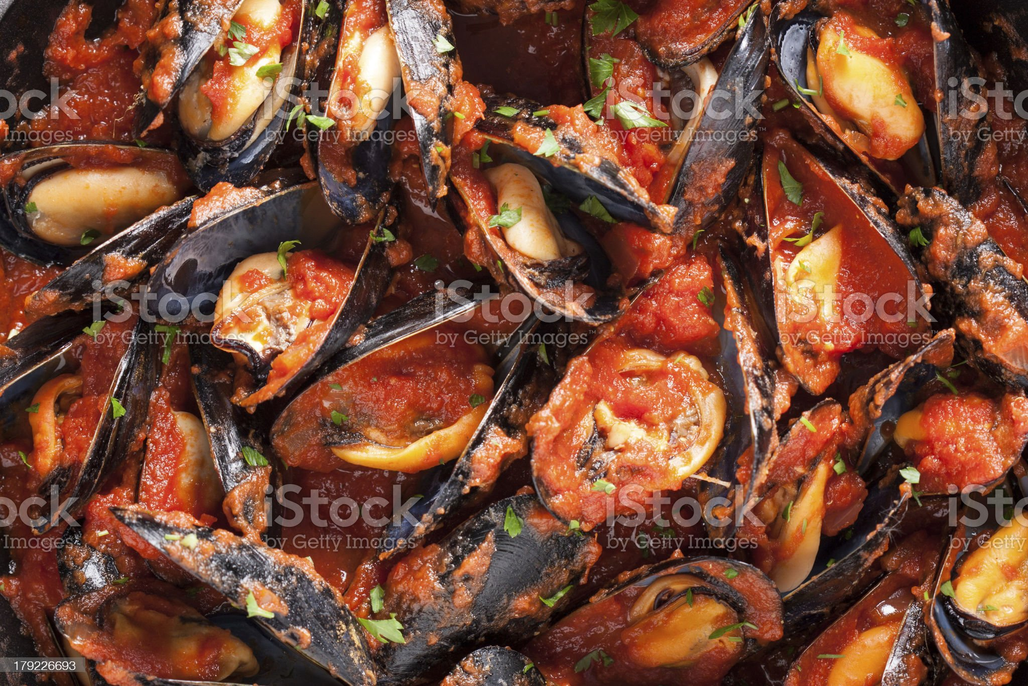 Mussels on stirfried tomato sauce royalty-free stock photo