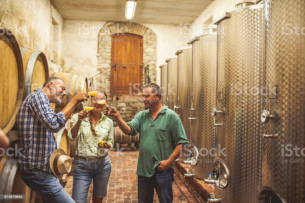 Must Tasting in a Vine Cellar stock photo