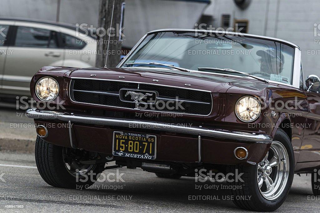 Mustang Convertible royalty-free stock photo
