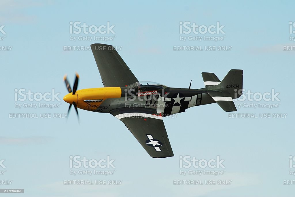 Mustang fighter plane stock photo