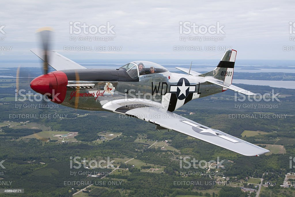 P-51D Mustang royalty-free stock photo