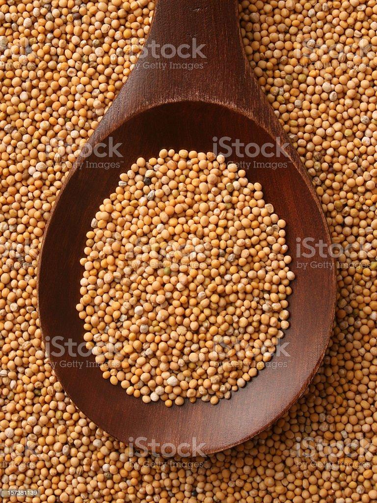 Mustard grains stock photo