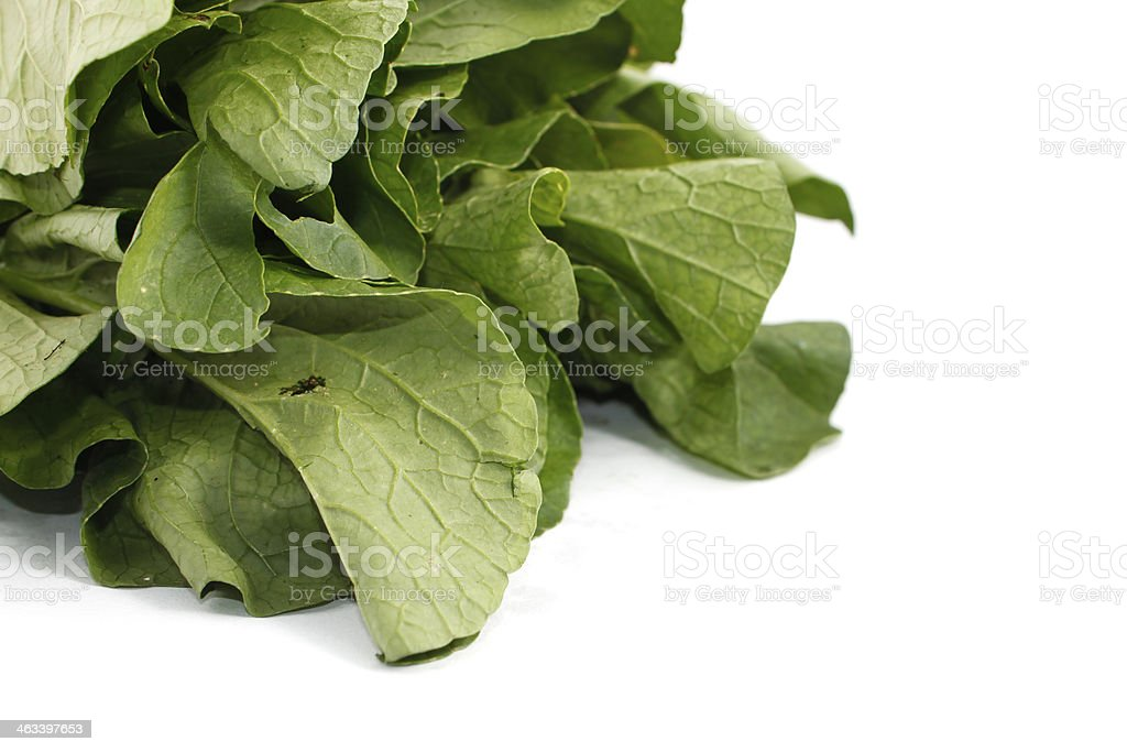 Mustard greens vegetable over white background stock photo