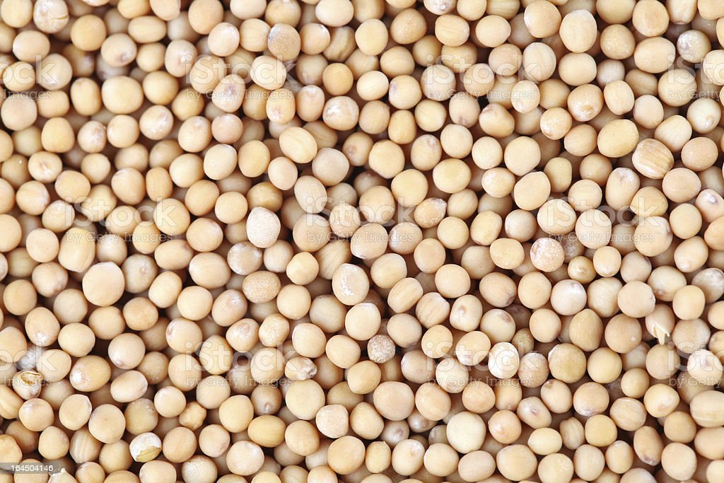 Mustard seeds background royalty-free stock photo