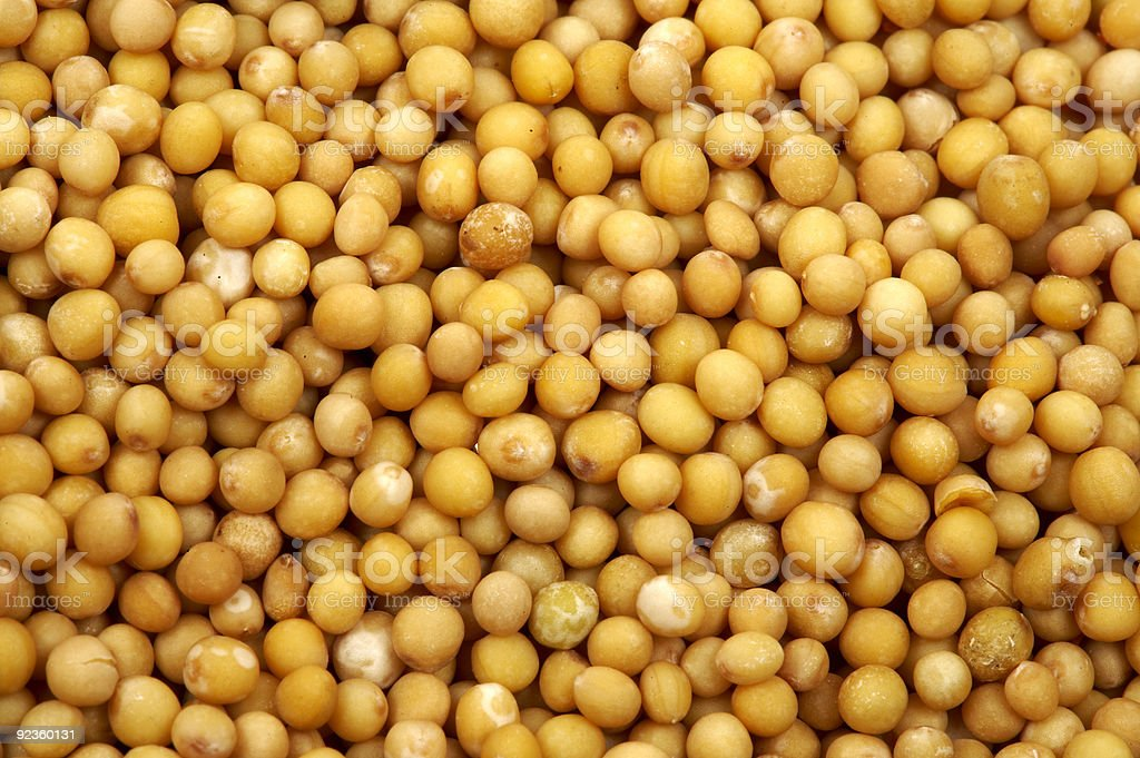 Mustard seeds royalty-free stock photo